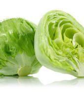 Ice-Berg Lettuce