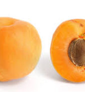 Imported Apricot