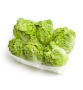 Lettuce gem imported