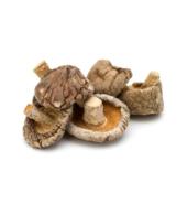 Mushroom Shiitake – Dried