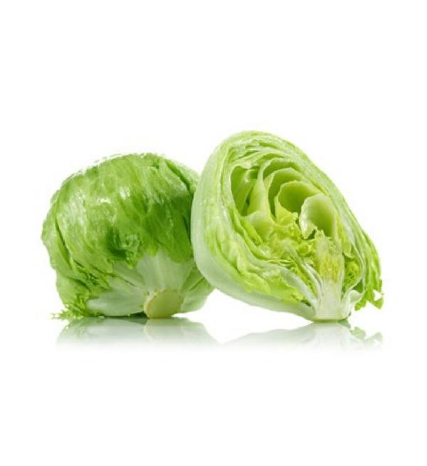Lettuce_Iceberg_2