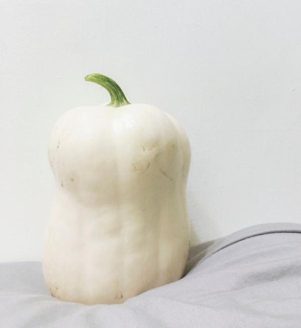 Pumpkin White/ Ash Gourd