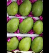 Mango Hamam Unripe 3kg
