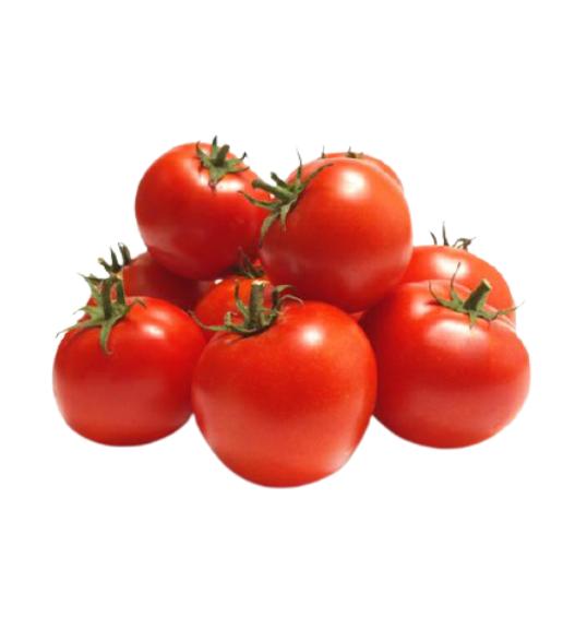 tomato round desi